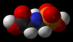 Глицин 100г Wirud (Германия)